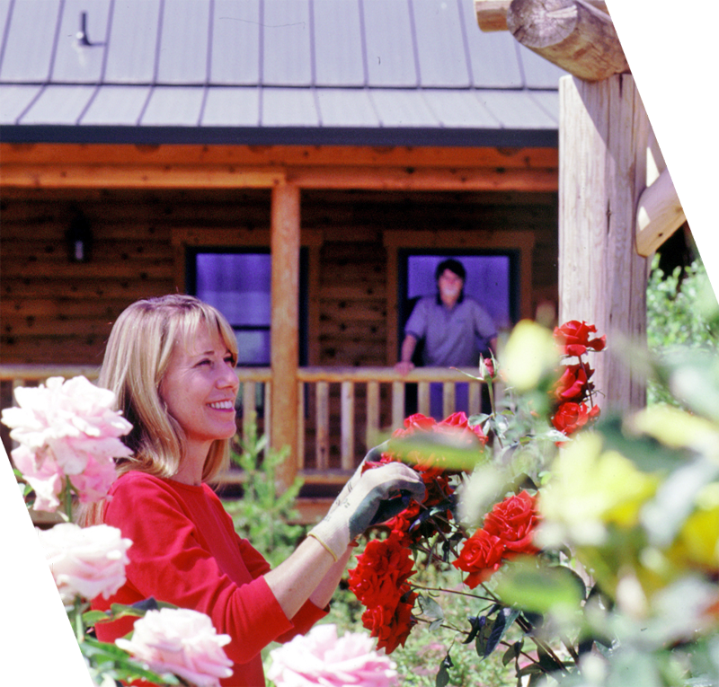 Log Home With Roses