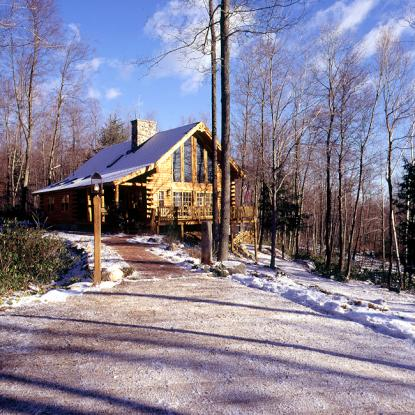 New Year 39 S Resolutions Log Home Style Real Log Homes
